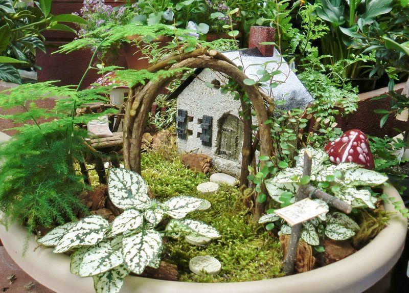 Fairy-Garden-1024x7341